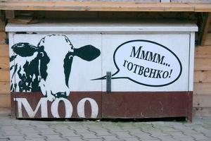 graffities 2015 moo 582 as
