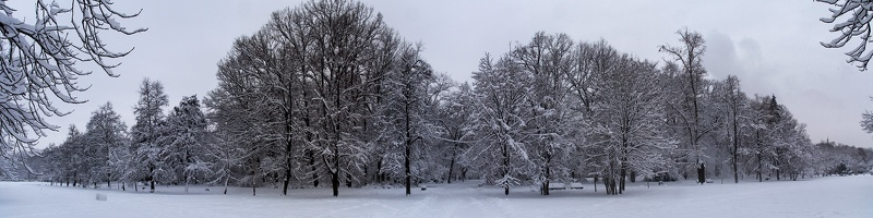 freedom garden pano winter 05